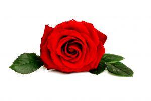 Short Romantic Love Poems